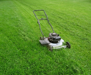 cutting-grass